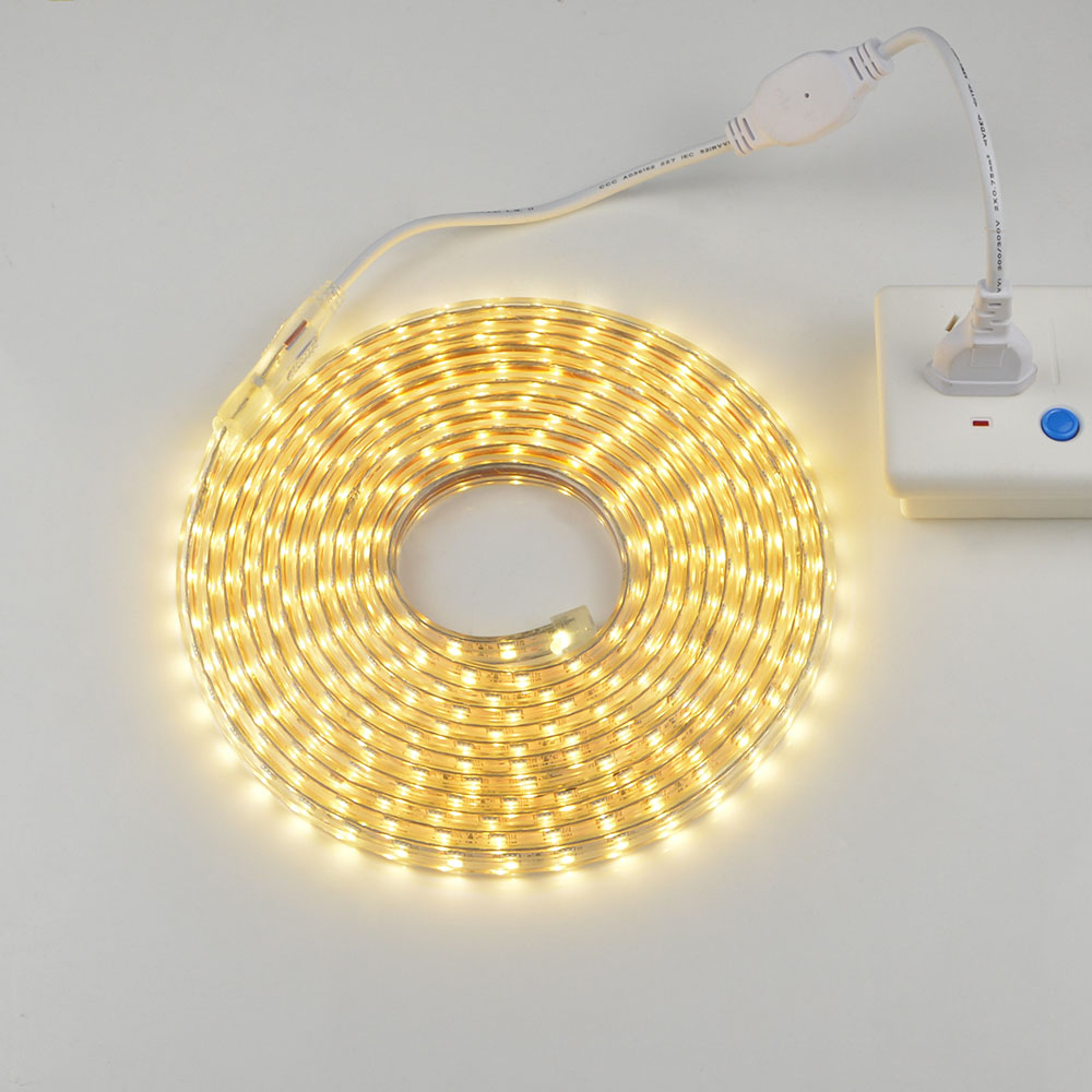 Dimmable Waterproof 220v Led Strip With Eu Plug 5050 Smd 60leds M Light Dimmer Garden Outdoor Home String